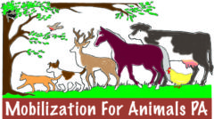 Mobilization For Animals